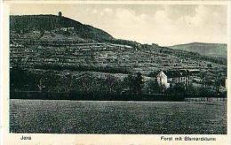 Jena   233        Forst Mit Bismarckturn - Jena