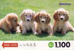 Carte Japon - Chien TECKEL Ou COCKER - DACHSHUND DACKEL Dog Japan Card - Hund Hond - 1238