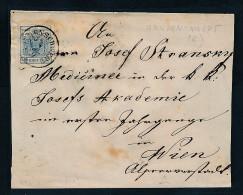 Österreich -Beleg  Wildenschwert   (be2270   ) Siehe Scan - Briefe U. Dokumente