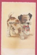 Peti Chien Avec Poupée Dans Sa Gueule - Dogs