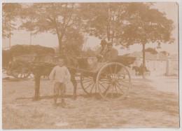Attelage - Calèche à Cheval Avec 2 Hommes Portant Le Chapeau - Format: 11.1 X 8.1 Cm - Personnes Anonymes