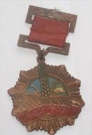 REPUBBLICA POPOLARE CINESE - MEDAGLIA MLITARE IN BRONZO PERIODO MAO (7) - Medals