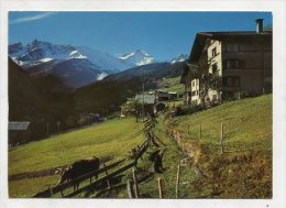 SWITZERLAND - AK 257029 Steinibach Im Sernftal GL - GL Glarus