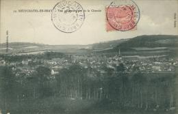 76 NEUFCHATEL EN BRAY / Vue Générale Prise De La Ciseraie / - Neufchâtel En Bray