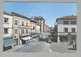 S.BONIFACIO..VIALE....VERONA...VENETO - Italia