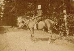 15 Photos Ancienne Militaire Officier Uniforme Cavalerie Chevaux - Guerre, Militaire