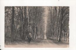 Brugny Allee Du Chateau - Francia