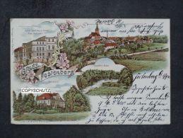 FESTENBERG Twardogora Oels Olesnica - Litho - Z. B. Hotel - Schloss - 1902 - Schlesien