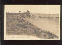 29 L'aber-wrach Les Dunes édit. Artaud N° 18 Vache - France