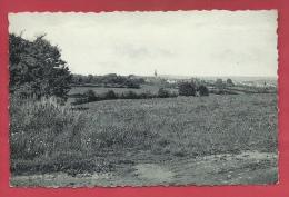 Cartes Province De Luxembourg / Petit Prix - Sohier - Panorama ... Du Village ( Voir Verso ) - Wellin