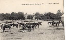 LAROCHEBEAUCOURT-ET-ARGENTINE  L'ANNEXE DU DEPOT DE REMONTE - Francia
