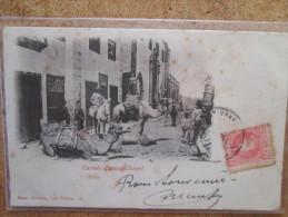 CAMELS CANARY ISLAND DOS 1900 - Espagne