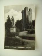 CASTELFRANCO MONUMENTO   GIORGIONE  VENETO   TREVISO -   VIAGGIATA  COME DA FOTO - Treviso