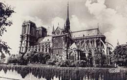 FRANCE:1966: §§ CPA §§: PARIS: Notre-Dame Et Rosace Sud. - Kirchen