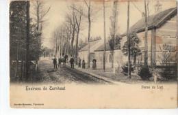Turnhout Ferme Du Lint - Turnhout