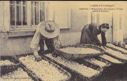 REPRODUCTION DE C P A---38---CHATTE---préparation Des Cocons---voir 2 Scans - Francia