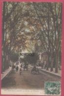 ALGERIE--SIDI BEL ABES--La Rue De Tlencem--attelages--animé - Sidi-bel-Abbes