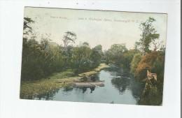 INVERCARGILL N Z 3384 WAIHOPAI RIVER 1908 - New Zealand
