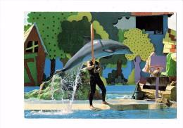 06 - ANTIBES - MARINELAND - Métier Spectacle Dauphin - Ballon Panier Basket-ball - - Delfines
