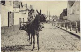 BRUGES - Jeune Laitier Flamand - N° 147 ND Phot. - Brugge