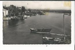 30  CPSM LE GRAU DU ROI RIVE DROITE DU CANAL 1952 - Le Grau-du-Roi