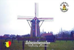 Carte Postale, Moulin A Vent, Windmills Encyclopedia, Belgium, Scherpenbergmolen, Westmalle (Antwerp) - Windmills