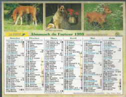 ALMANACH DU FACTEUR 1995 ( CALENDRIER )  POULAIN - BERGER DES ALPES - FAON DE CHEVREUIL / POUSSIN - CHATON - LAPIN ROUX - Calendriers