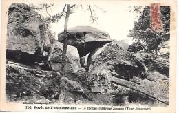 DOLMEN D'Alphonse JOUANNE (Tour Denecourt) - Forêt De FONTAINBLEAU - Dolmen & Menhirs