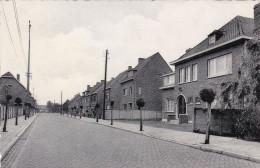 Herenthout Van Reynegomlaan Kempen - Herenthout