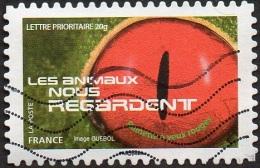 Oblitération Moderne Sur Adhésif De France N° 1154 - Les Animaux Nos Regardent - Rainette à Yeux Rouge - France