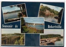 SOUVENIR DE ROBERTVILLE : CARTE MULTIVUES ( Weismes ) - Waimes - Weismes