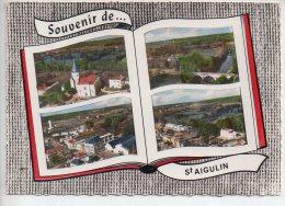 REF 239 : CPSM 17 Saint St Aigulin Souvenir De... - France