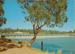 Australia 54773 Mildura The Weir Crosses The Murray River Posted - Mildura