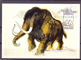 Finland - ESPOO - ESBO - Mammuteista - Kaikki  15/7/85  (RM10172) - Francobolli