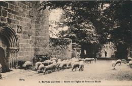 TARNAC - Entrée De L'Eglise Et Route De Nedde (moutons) - Francia