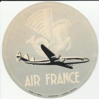 DOC2) ETICHETTA PER BAGAGLI LABEL FOR LUGGAGE AIR FRANCE 1954 CIRCA - Aviazione Commerciale