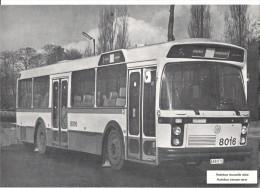 STIB - AUTOBUS NOUVELLE SERIE - AUTOBUS NIEUWE SERIE - Transportation