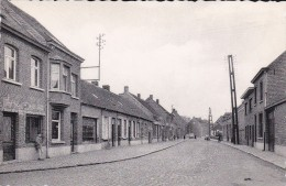 Herenthout - Vonkenstraat - Herenthout