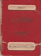PALESTINE EGYPT 1962 ALL PALESTINIAN GOVERNMENT DIPLOMATIC PASSPORT NO. 30