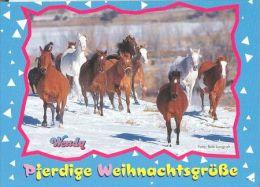 HORSES / PFERDE / CHEVAUX /  POSTCARD UNUSED     ( H  3324  / - Pferde