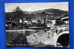1950 CORTONA VEDUTA DA CAMUCIA - AREZZO -/ Diretta A  Trieste - Altre Città