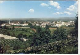 BUTTRIO (UD) - Panorama, - Otras Ciudades