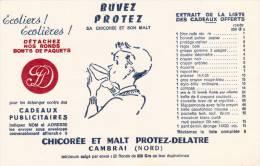 Chicorée  Protez Delatre - Cambrai - Format 21 X 13.5 Cm - Alimentaire