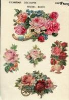 ROSES - Bloemen
