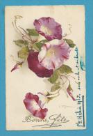CPA 2977 Fantaisie Fleurs Liseron Illustrateur Catharina KLEIN - Klein, Catharina