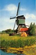 Molen Windmolen    Wipwatermolen Schoonhoven            A 55 - Moulins à Vent