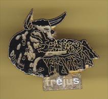 48491-Pin's.Arenes De Frejus.taureau.corrrida. - Bullfight - Corrida