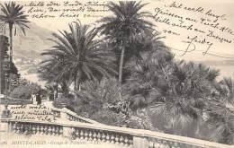 Monte Carlo, Groupe De Palmiers - Monte-Carlo