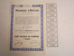 Peignage D'Eecloo - Part Ociale Au Porteur - Textiel