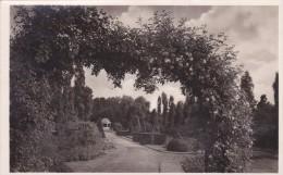 Carte Postale, Rosengarten, Zweibrücken - Zweibruecken